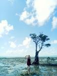 With the wishing tree of Nilandingan