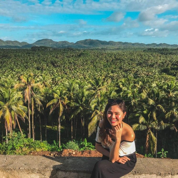 COCONUT TREES, SIARGAO PHILIPPINES