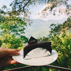 The Giant Chocolate Cake Delight